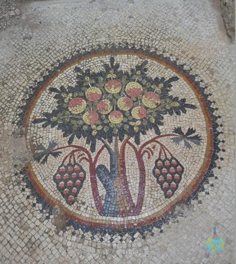 Madaba Iordania Copacul Vieții