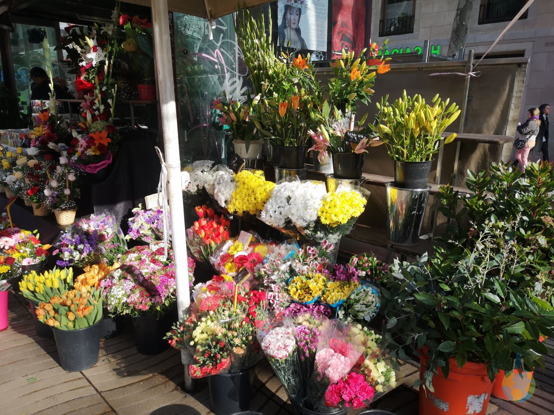 Barcelona La Rambla plimbare centru arta stradala flori cafenele