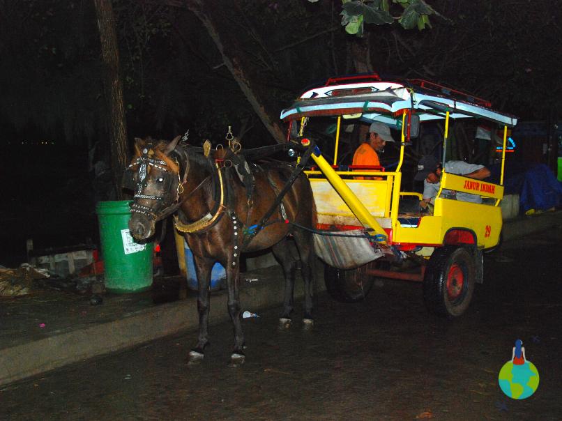 Gili Trawangan cidomo transport