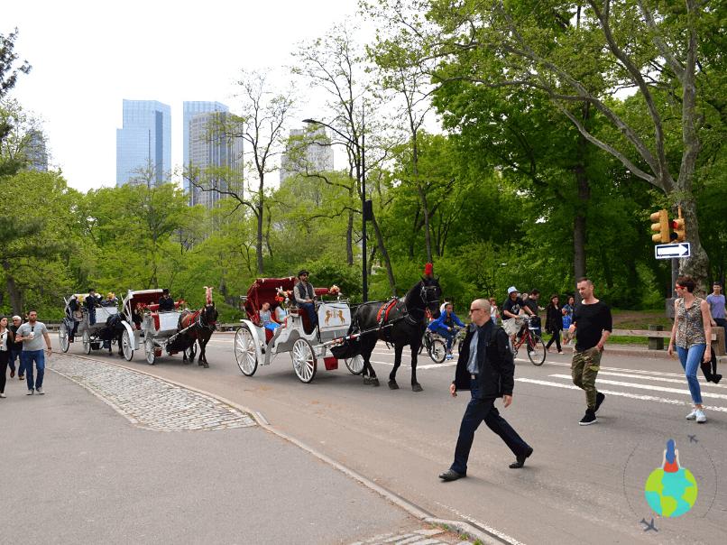 Trăsuri în Central Park