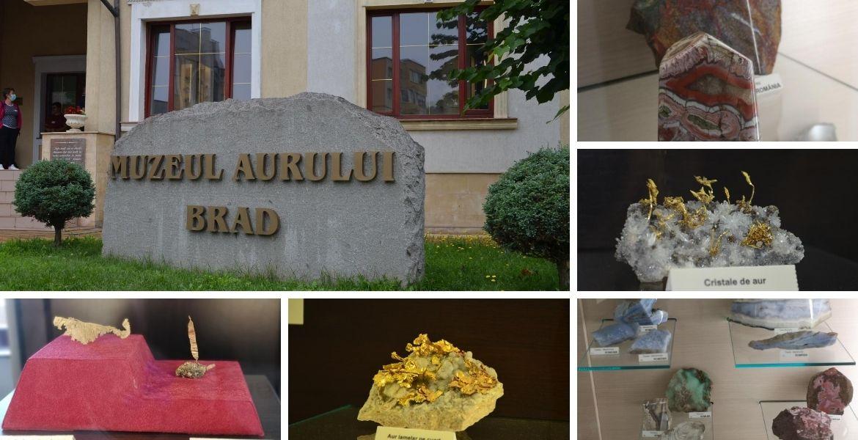 Cover_Muzeul Aurului de la Brad
