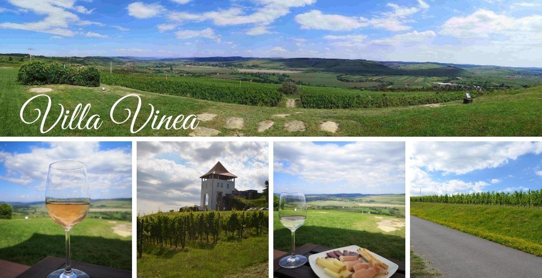 Villa Vinea